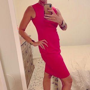 Hot Pink Sheath Scuba Dress with Gold Zipper